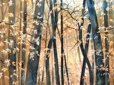This was the image I used when I was thinking about the woods in the book.